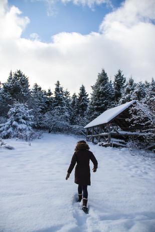 Premier hiver