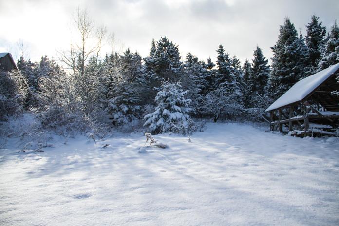 La cours en hiver