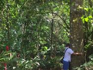 Indigenous 6.PNG