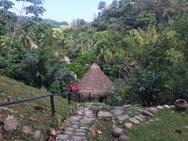 Indigenous 1.PNG