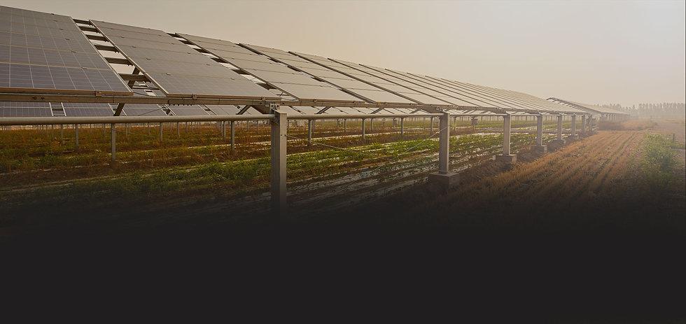 Agrovoltaica-huerto-solar-bombeo-solar-p