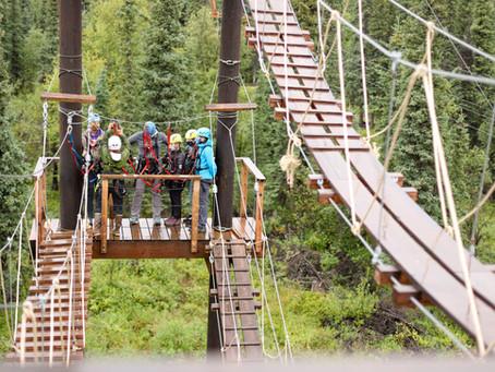 Let's Zipline! | Denali Park Zipline