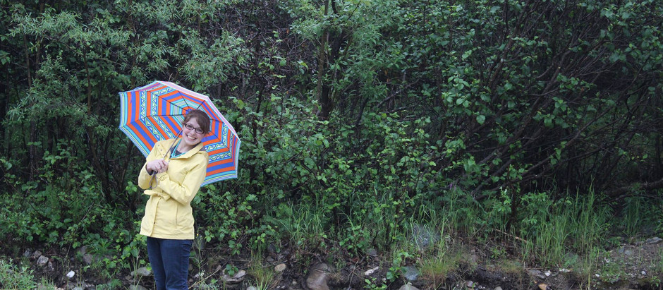 6 Things to Do In Denali When It RAINS!