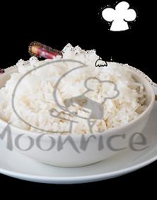 MoonRiz.png