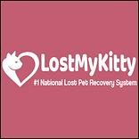 LostMyKitty