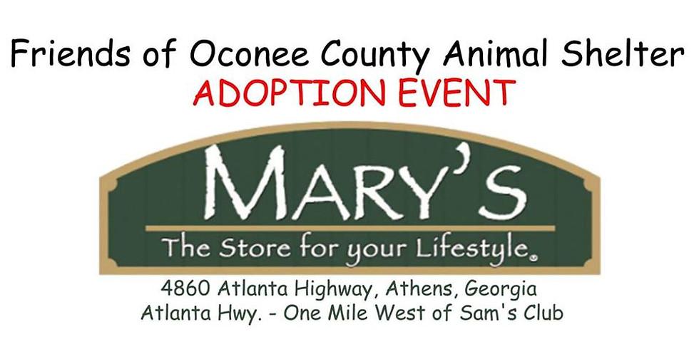 Friends of OCAS Adoption Event