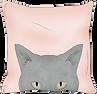 throw pillow 1.png