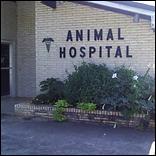 Athens Animal Hospital