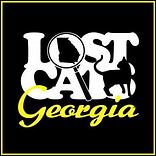 Lost Cats Georgia