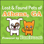Athens, GA - Lost Dogs, Cats & Pets