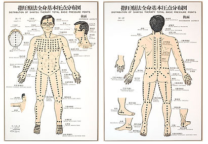 KIAI SHIATSU massage kelowna, Japanese pressure point treatment chart