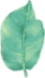 Folha grande