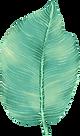 duży Liść