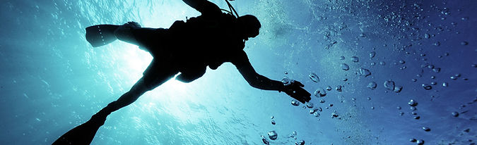 Scuba Diving Key West Reef