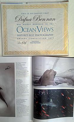 Ocean Views - Nature Best