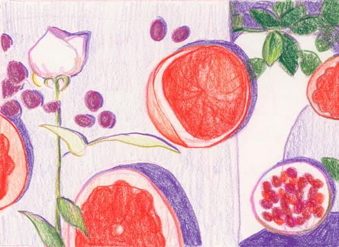 Still life with grapefruit