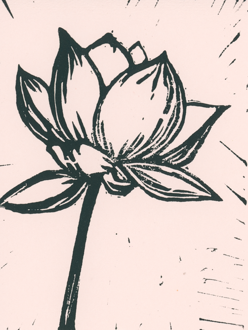 Peach lino lotus.tif
