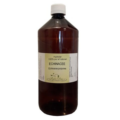 Hydrolat d'Echinacée