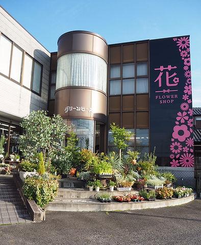豊田市花屋のグリーンピース