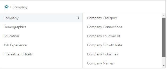 campo azienda linkedin ads
