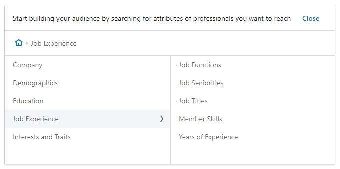 uso dell'esperienza lavorativa in Linkedin ADs