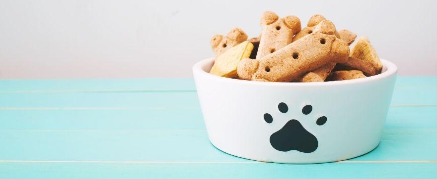ricerca di mercato pet food in italia
