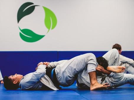 Jiu Jitsu: Batching Personal Development