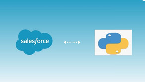 Call Salesforce API from Python