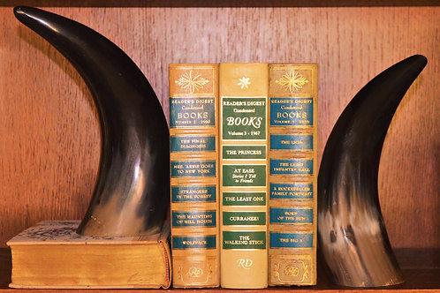 Polished Bison book ends