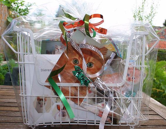 Kittenpakket.jpg