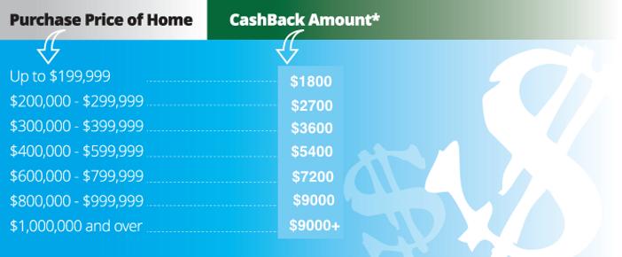baylor cashback chart.png