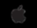 apple relocation realtor austin services