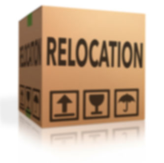 dallas relocation realtor, dallas relocation resources, top dallas relocation expert , dallas home buying realtor, texas real estate, coppell realtor