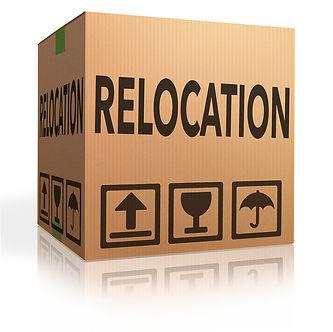 dallas relocation realtor, dallas relocation resources, top dallas relocation expert , dallas home buying realtor, texas real estate, coppell realtor