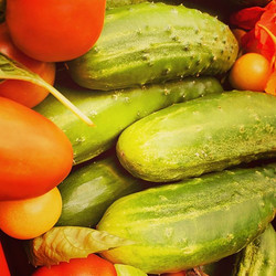 Cucumbers are finally ripening! Come get