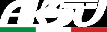 основное лого.png