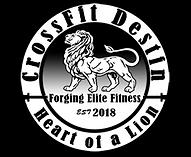 CrossFitDestin_Logo_Web_withGradient_Sma