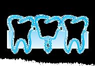 dental implants vector.png