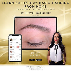 Learn Bold Brows Basic Training