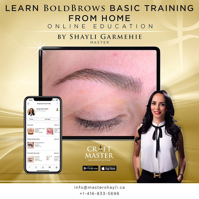 Bold Brows Online Basic Training