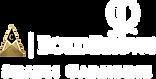 BoldBrows White Logo Small.png