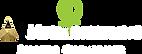 Microneedling-Master-Logo