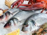 pescado y mariscos.jpg