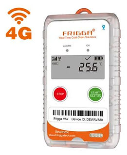 Frigga4G Exportaciones.JPG