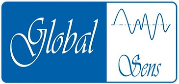 Logo Global_edited.png