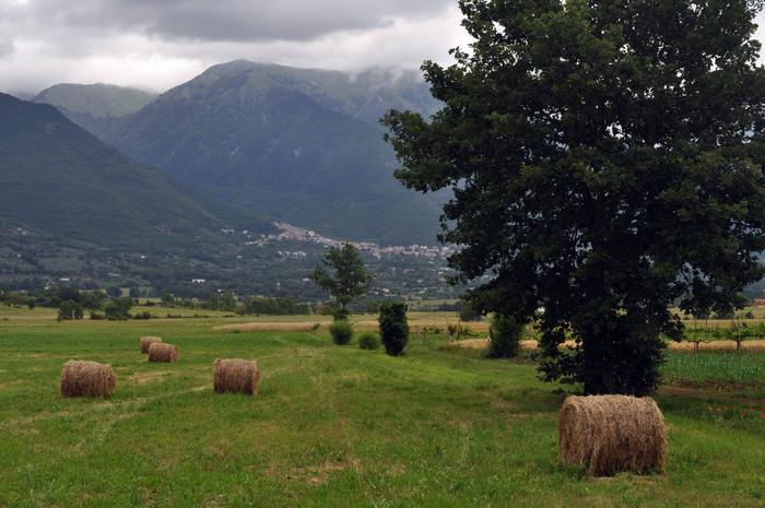 La carestia a San Donato nell'anno bisestile 1764