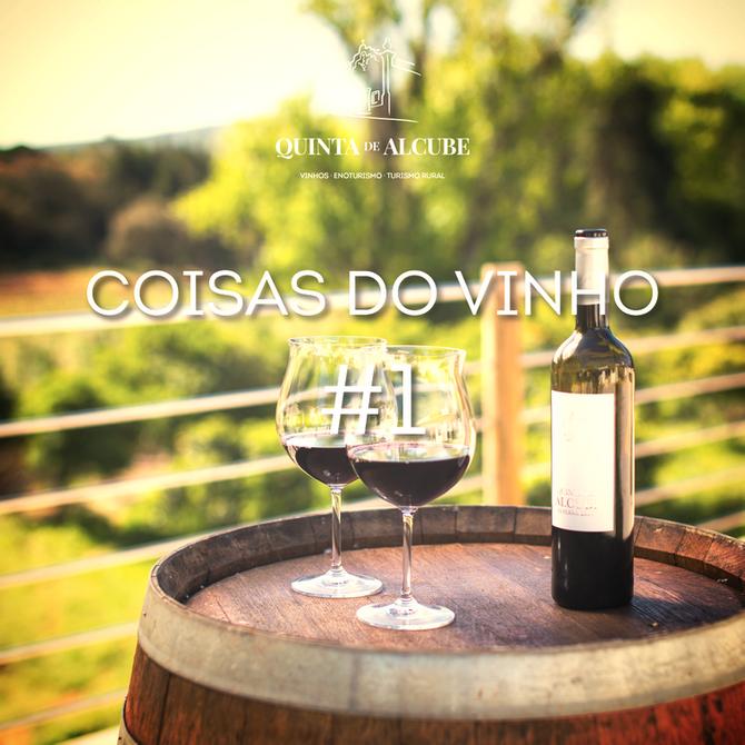 Coisas do vinho #1   Abrir a garrafapara o vinho respirar…