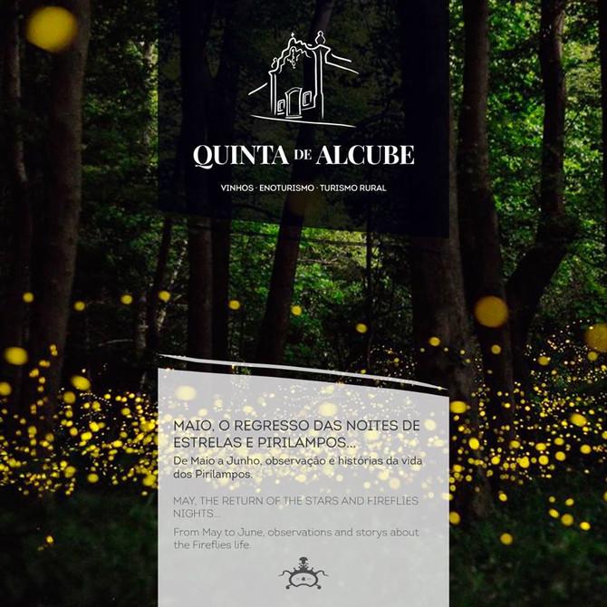 Noites de Pirilampos na Quinta de Alcube