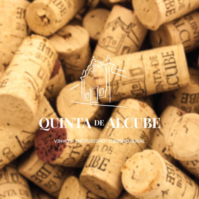 Coisas do Vinho #5 PROVAS DE VINHOS