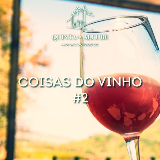 Coisas do vinho #2 | Mitos sobre o vinho rosé.